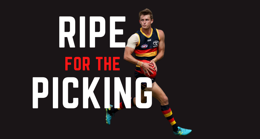 Ripe For The Picking | Round 7